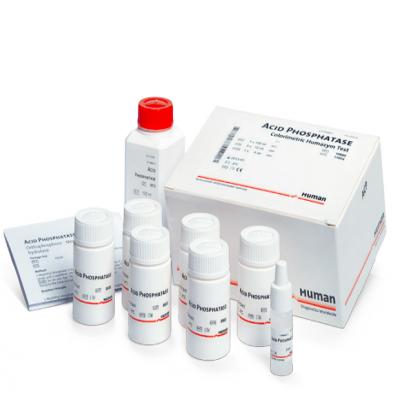 Cholinesterase (CHE)